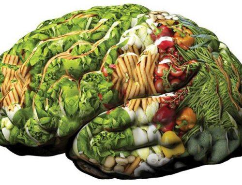 Curare il cervello con gli alimenti