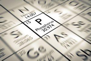 Il fosforo : minerale indispensabile per il  nostro organismo