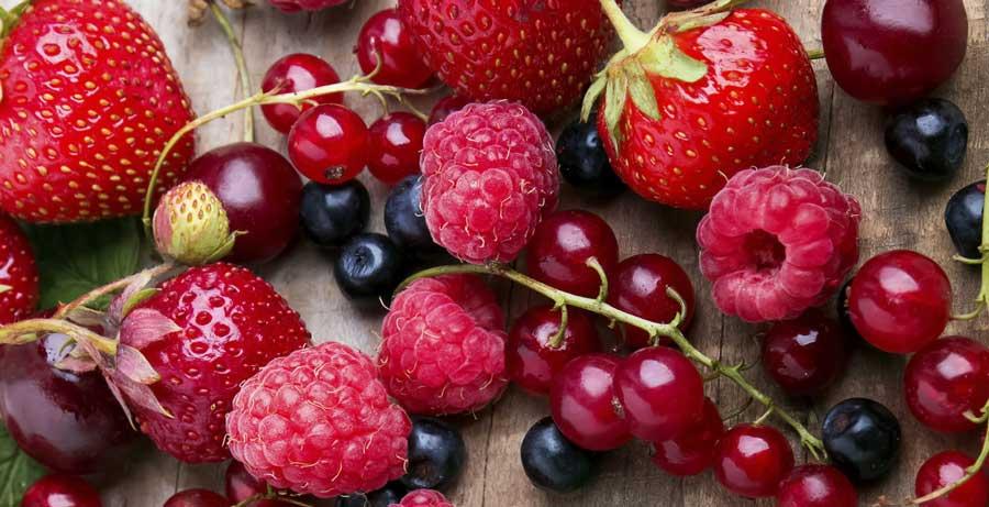 10 ottimi motivi per mangiare frutti di bosco