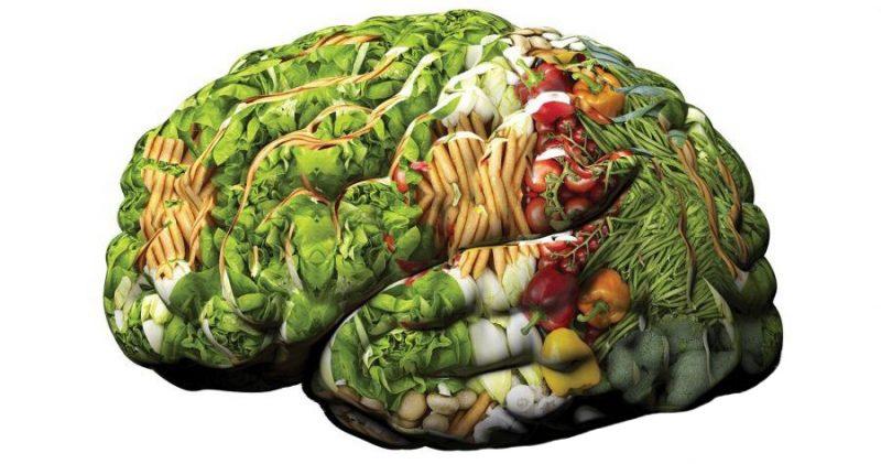 alimenti-cervello